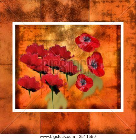 Framed Poppy Art