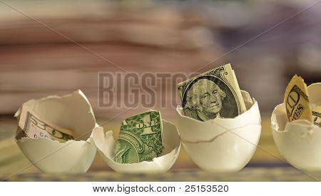 US Bills in Chicken Egg