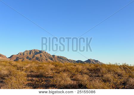 Desert Sunset Under a Clear Blue Sky