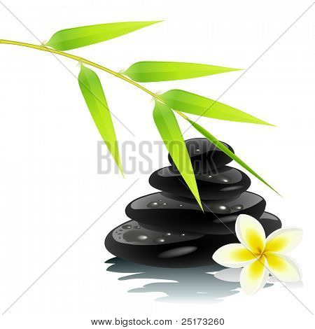 Zen ambiance with bamboo and black stones