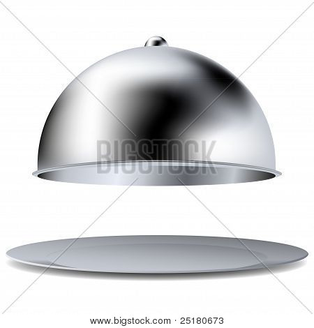 Vector Tray Isolated On White. Best Choice