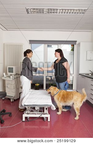 veterinarian shaking hands