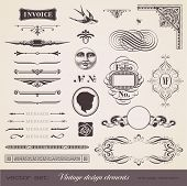 pic of swallow  - set of various playful retro design elements - JPG