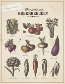 image of vegetables  - old - JPG