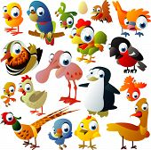 stock photo of cartoon character  - extra big set of birds - JPG