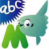 picture of mola  - Animal alphabet - JPG