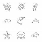 Water Wildlife Icons Set. Outline Set Of 9 Water Wildlife Vector Icons For Web Isolated On White Bac poster