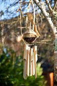 image of windchime  - Interesting Bamboo wind chimes hanging in garden - JPG