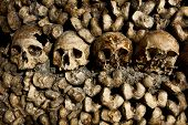 stock photo of catacombs  - Human skulls and bones in the Catacombs in Paris - JPG