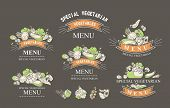 Set Of Labels With Vegetarian And Raw Food Diets, Organic Food, Design Elements Of Restaraan Cafe Pa poster