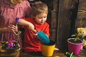 Kid Concept. Kid Learn Planting Flower In Pot With Soil. Little Kid Potting Plants. Adorable Kid Wit poster