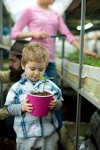 Grow Plant. Small Boy With Mother Grow Plant. Plant Care. Kid Grow Family Tree In Greenhouse. Small  poster