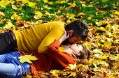 Man And Woman With Romantic Faces On Grass And Leaves Background. Couple In Love Lies On Dry Fallen  poster