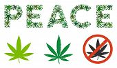 Peace Text Composition Of Weed Leaves In Various Sizes And Green Tints. Vector Flat Weed Objects Are poster
