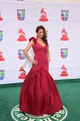 LOS ANGELES - NOV 10:  Lourdes Estefan arrives at the 12th Annual Latin GRAMMY Awards at Mandalay Ba