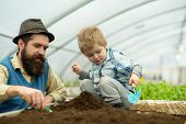Botanic Worker. Botanic Worker Child With Father In Greenhouse. Farm Worker In Botanic Garden. Botan poster