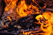 Fire. Wood Burning In The Fire. Burning Coals. Charcoal. Burning Horn. poster