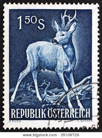 Postage stamp Austria 1959 Roe Deer, Capreolus Capreolus