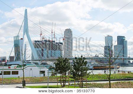 The Park And Embankment Near The Bridge Erasmus Of Rotterdam. Netherlands