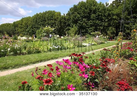 Paris - Garden Of Plants