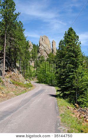 Custer State Park, Black Hills, South Dakota, Usa