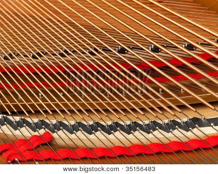 Interior Of Grand Piano With Strings