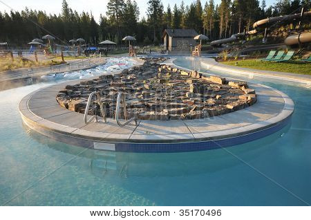 Pool With Rock Garden And Inner Tubes