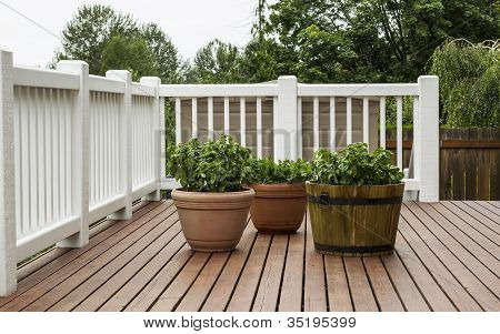 Home Patio Garden