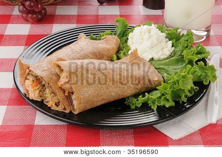 Salmon Avocado Wraps With Cottage Cheese