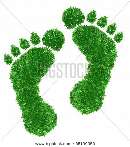 Green Footprint Sign