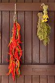 Постер, плакат: сушеный перец чили Розмари и ромашка повешен на средиземноморских коричневая дверь