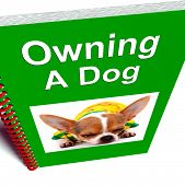Owning A Dog Book Shows Canine Care Advice poster