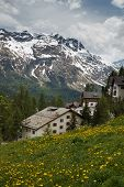 stock photo of engadine  - St - JPG