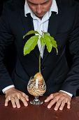 image of avocado tree  - male in a suit with a new avocado plant thinking about different life forms and legal rights - JPG