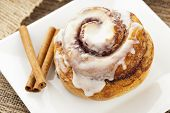 Fresh Homemade Cinnamon Rolls
