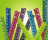 pic of amortization  - multicolored metal springs in one group  - JPG