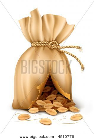 Cracked Sack Wired By Rope With Wheat Corn