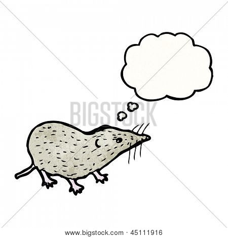 shrew illustration