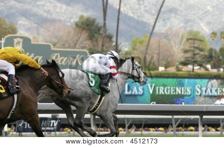 Stardom Bound Wins The Las Virgenes Stakes