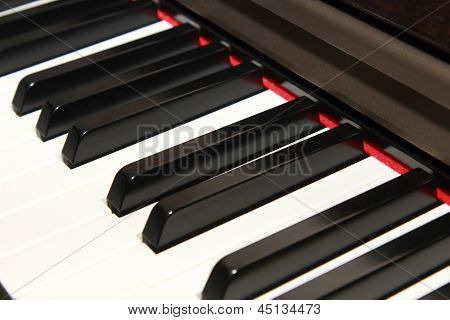 Side View  Of Piano Key
