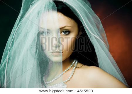 Misterious Brunette Bride Wearing A Veil