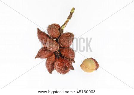 tropical fruit salaka