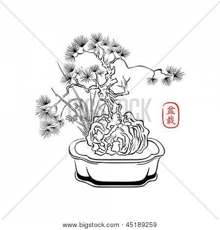 Ink styled drawing of bonsai tree with iris flowers
