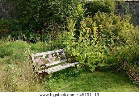 Bench in the walled garden, Applecross
