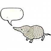 cute shrew illustration