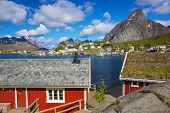 stock photo of lofoten  - Red fishing rorbu huts by the fjord in town of Reine on Lofoten islands in Norway during summer - JPG