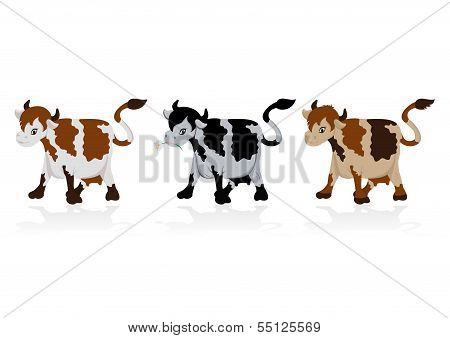 Abstract Cow Collection