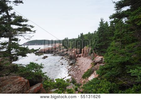 The Rocky Coast Of Maine