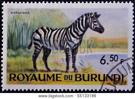 stamp printed in Kingdom of Burundi shows an African animal - Zebra