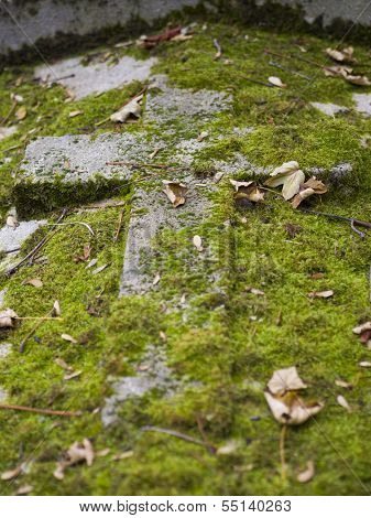 old nameless tombstone in cemetery setting shallow depth of field